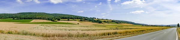 panorama landscape in summer