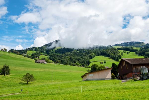beautiful green hill landscape in switzerland