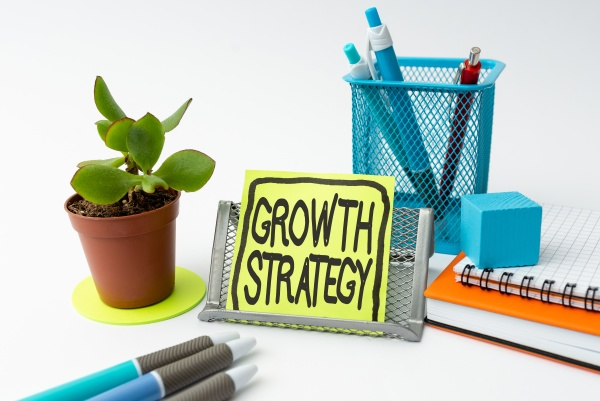 conceptual caption growth strategy business