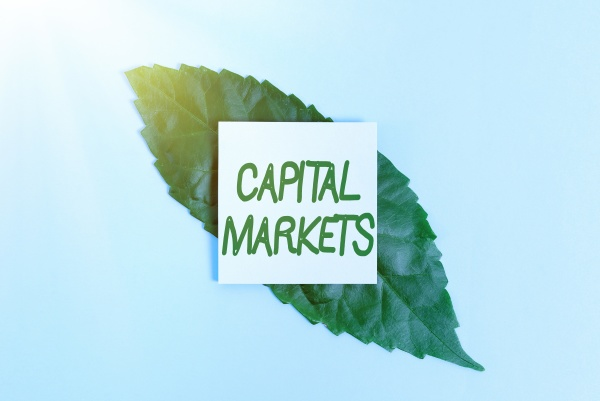 text sign showing capital markets business