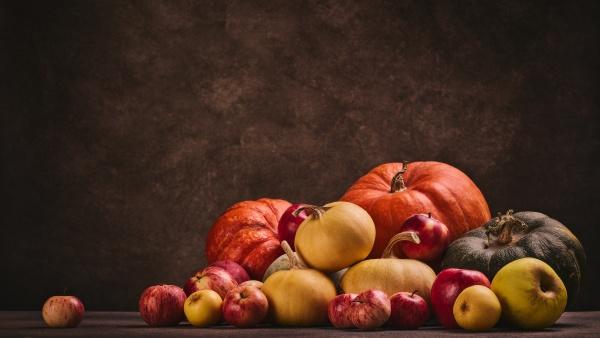 autumn harvest happy thanksgiving day