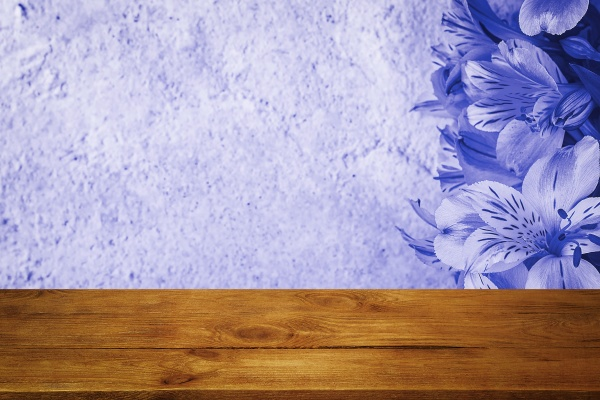 background flowers on a textured stucco