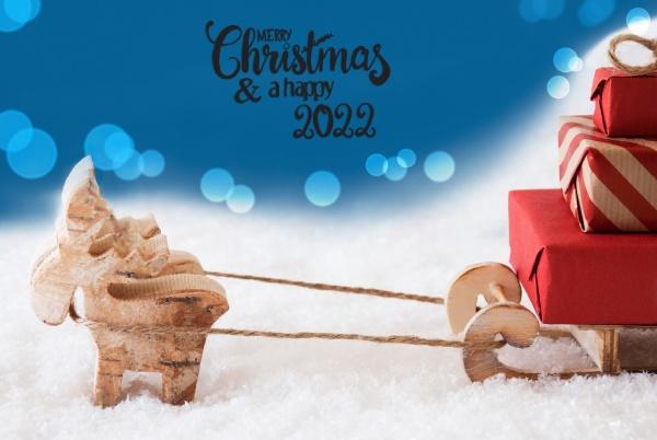 reindeer sled snow blue background merry