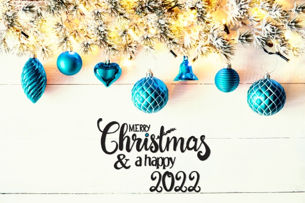 turquoise christmas decoration fir branch merry