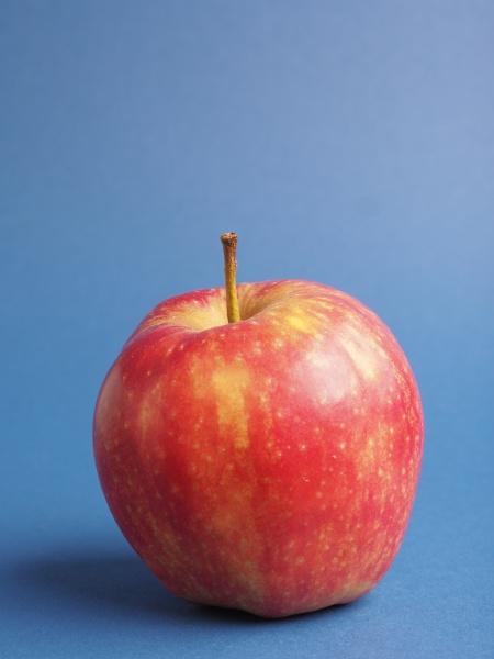 one fresh red organic apple on
