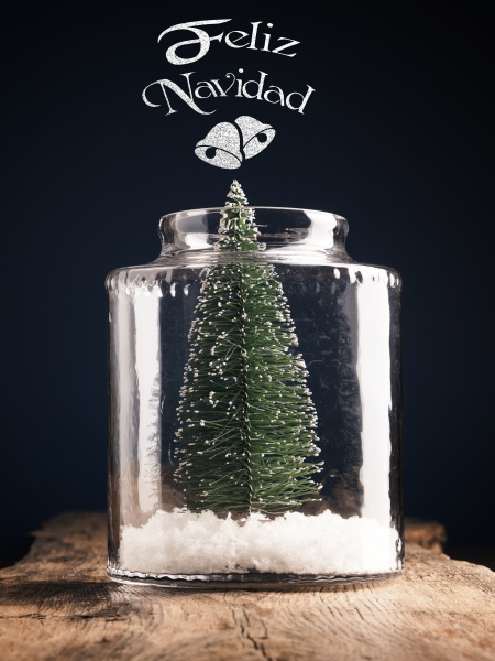 a christmas tree in a jar