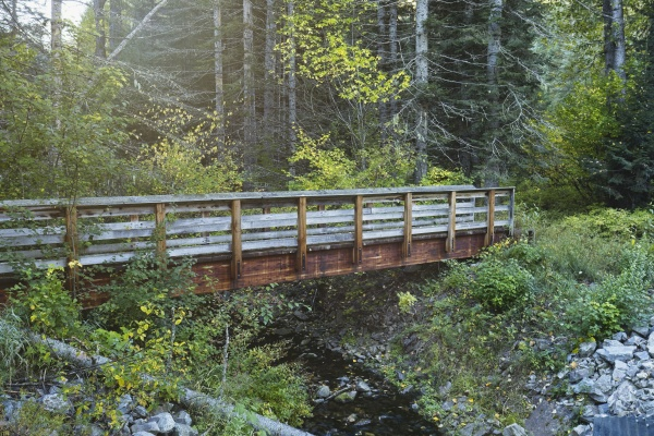 footbridge over a stream in idaho