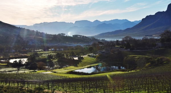 landscape with wine farms and the