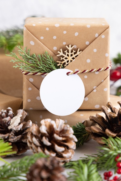 christmas present with round blank gift