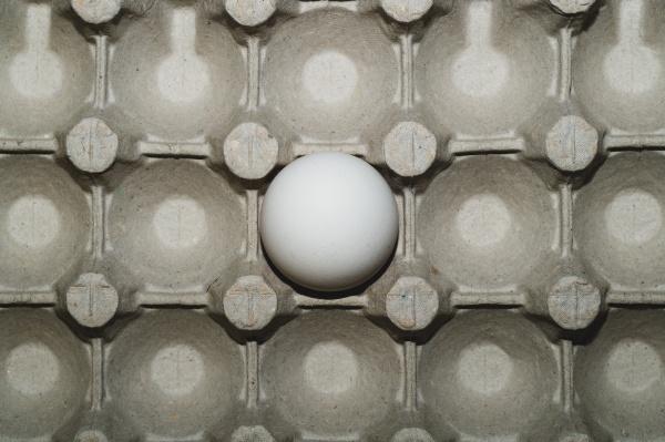 white egg in carton box background