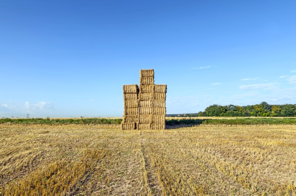 hay bales in a field after