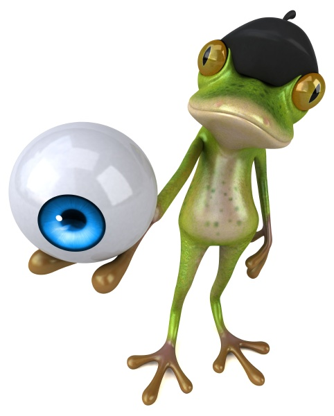 fun french frog 3d