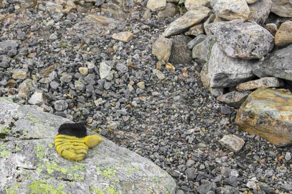 yellow childrens glove forgotten lost on