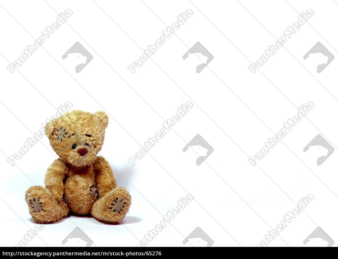 loving, bear - 65276
