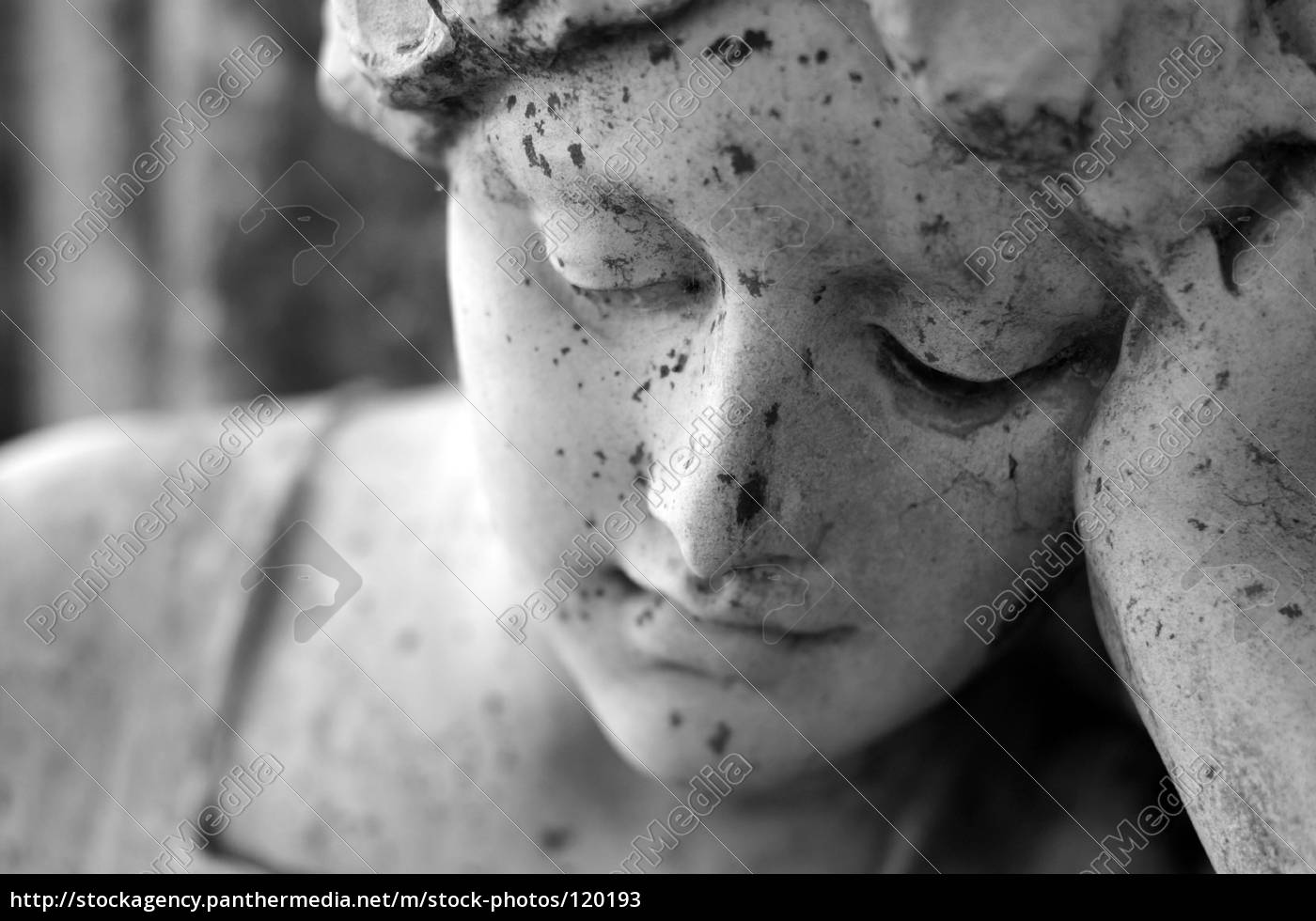 portrait, of, a, mourner - 120193