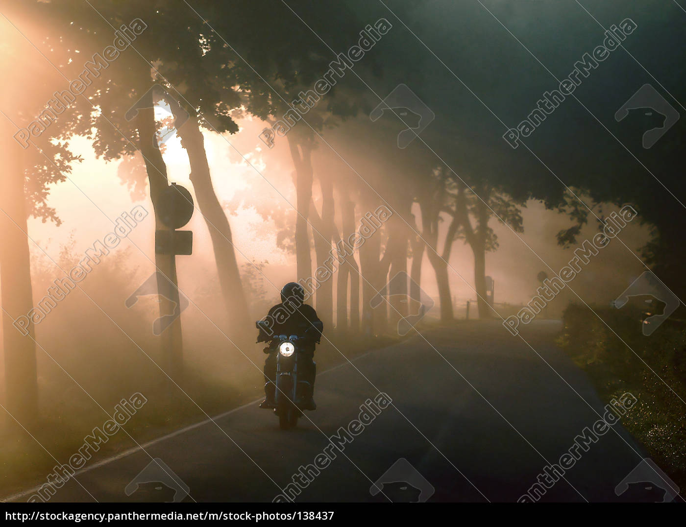 fog, light - 138437