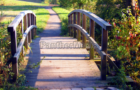 luz arvore arvores parque verde ponte