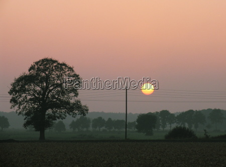 sunset on the lower rhine