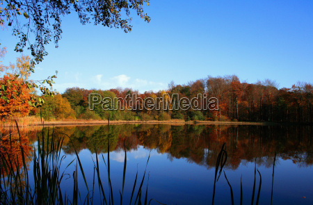 autumnal, mirrored, -1 - 160520