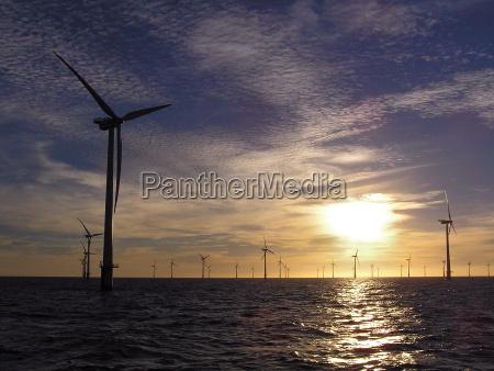offshore windpark1