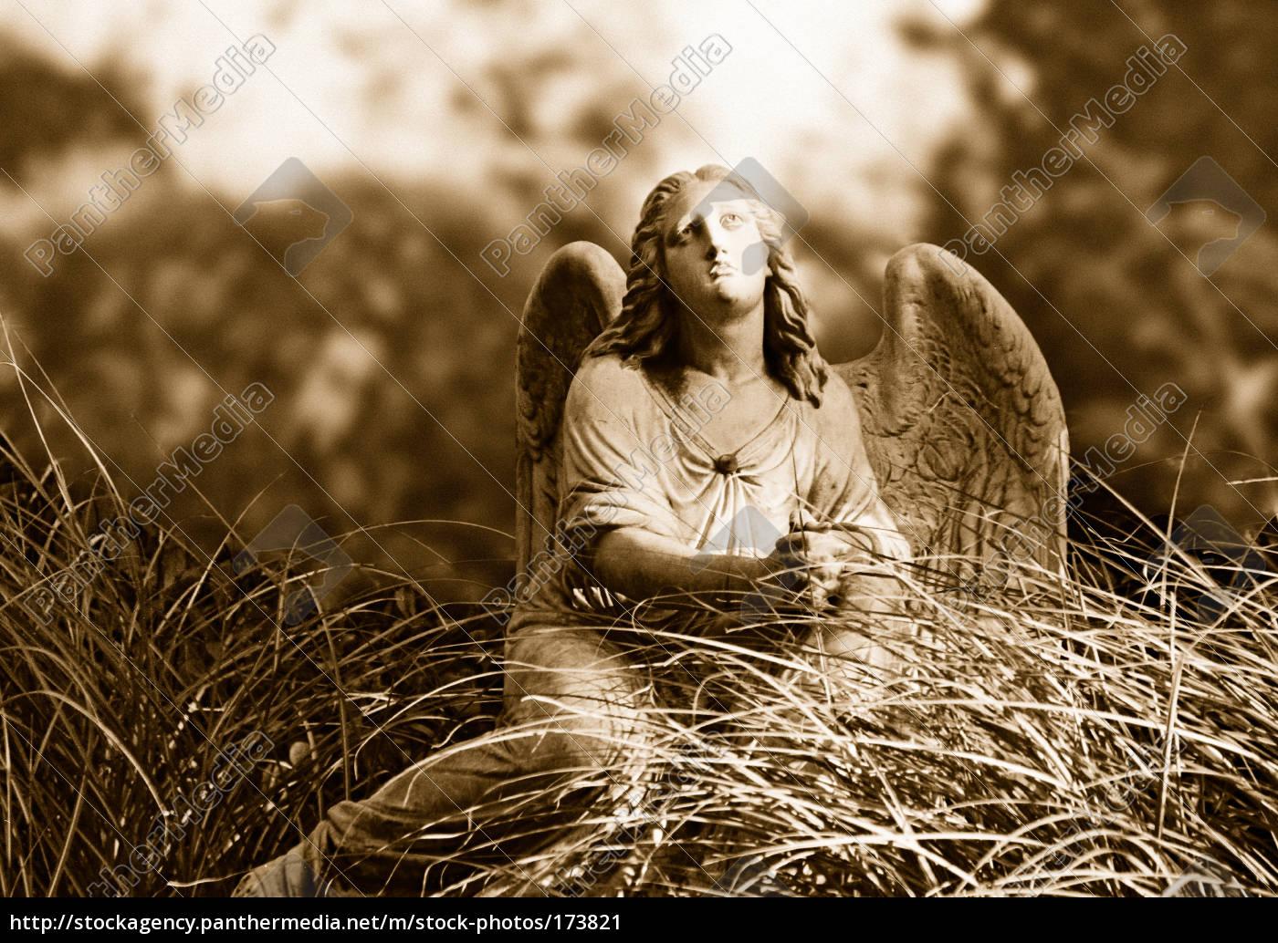 angel - 173821