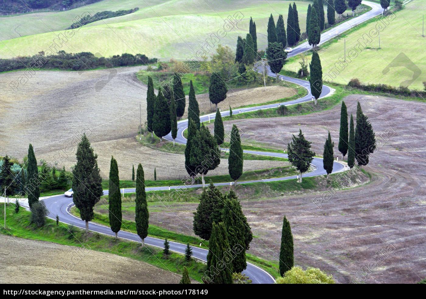 real, tuscany - 178149