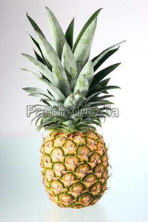 pineapple, 01 - 181630