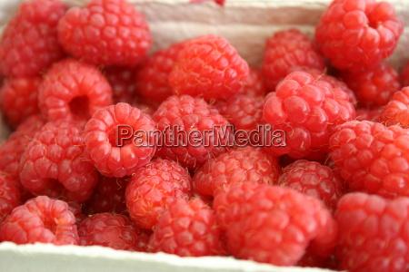 raspberries - 181381