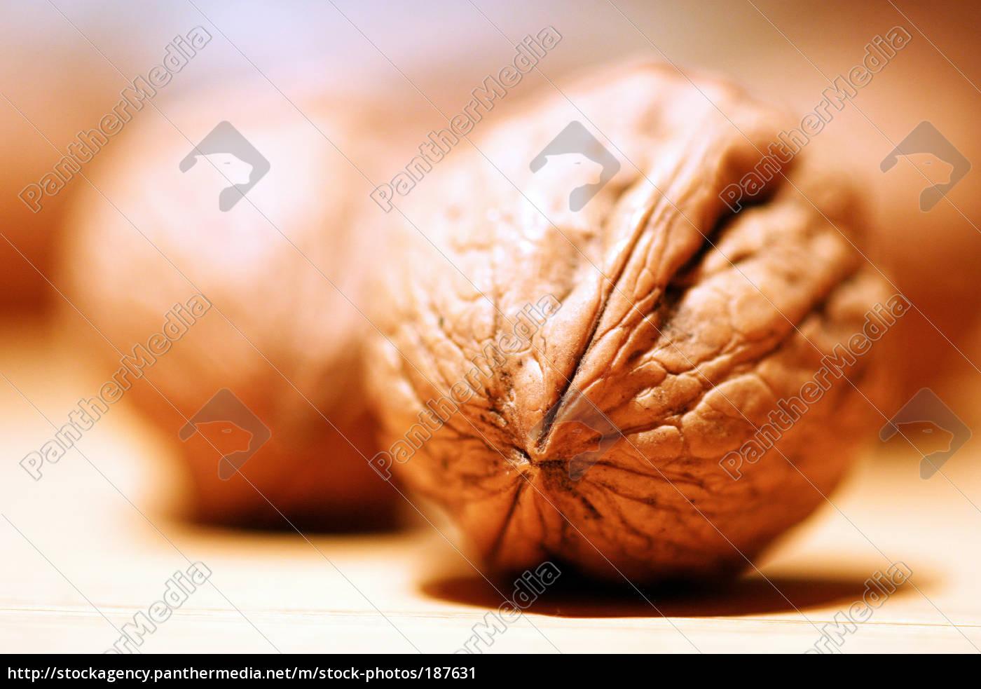 walnut - 187631