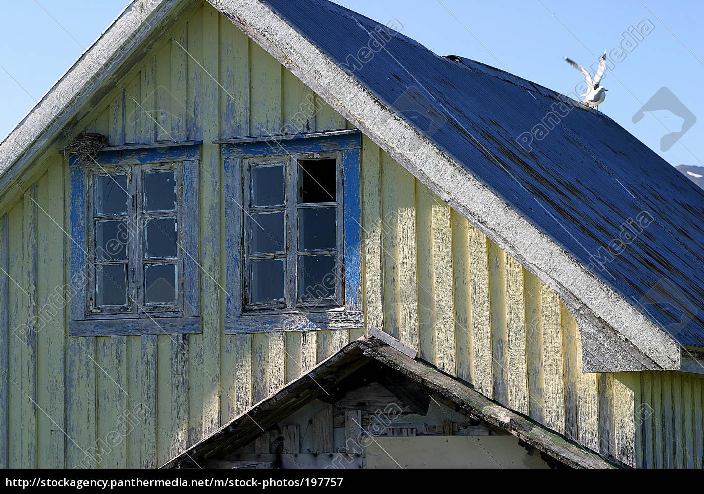 bird, house - 197757