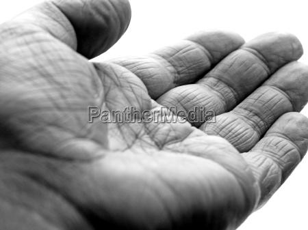 hand - 198053