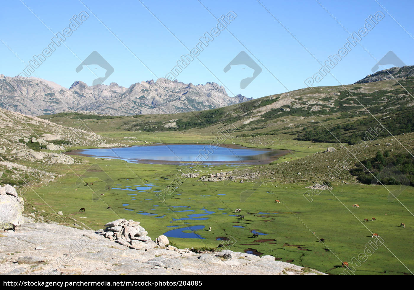 corsica, lac, nino - 204085