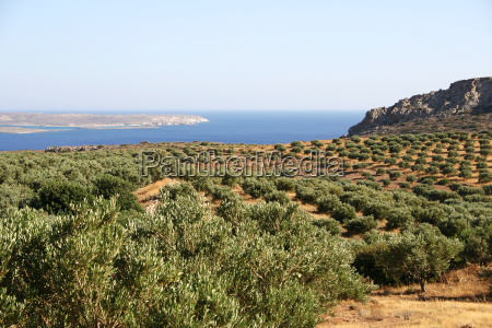 east, crete - 204141