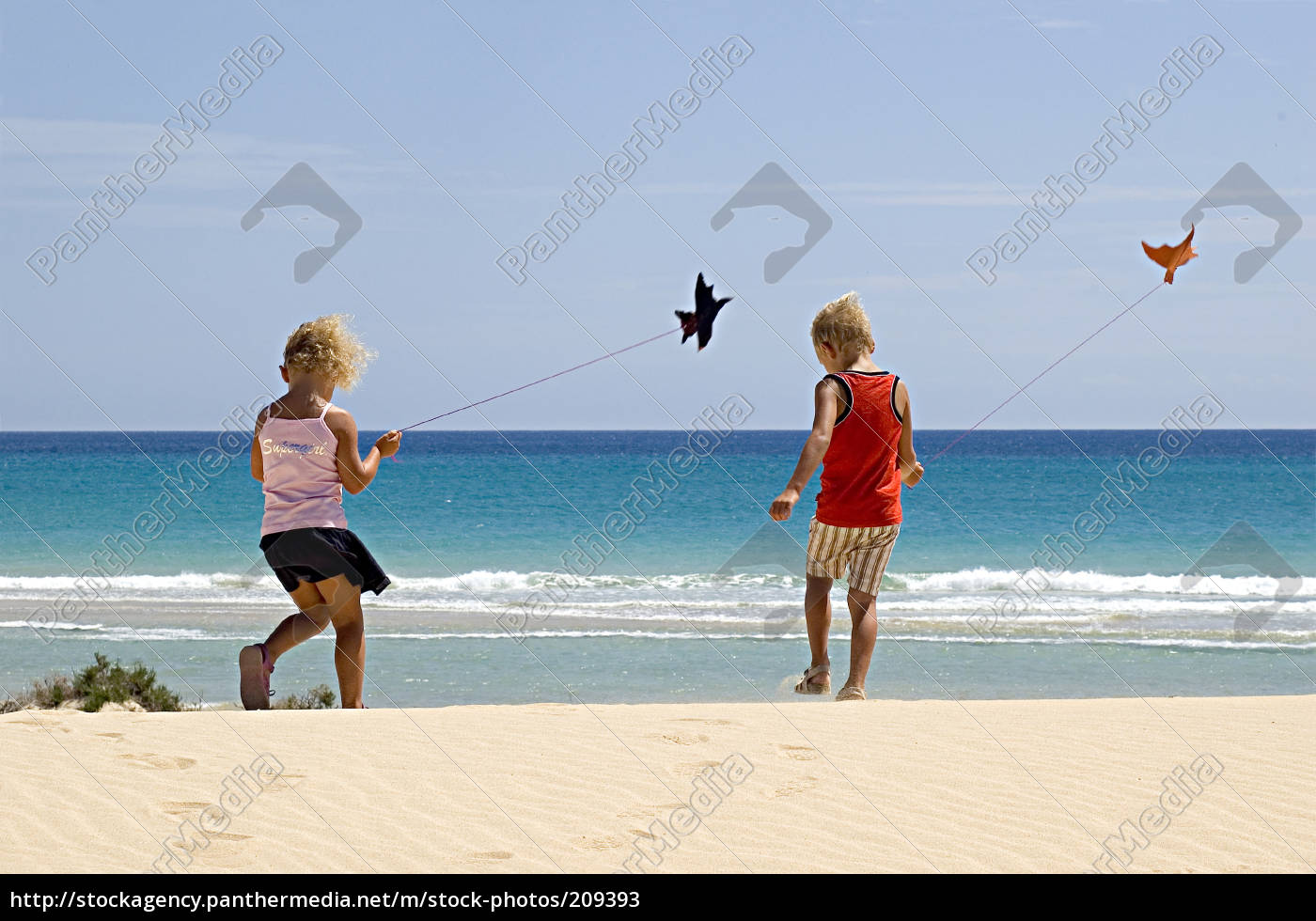 small, kites, at, the, beach - 209393