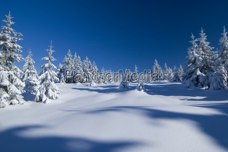 winter, wonderland - 212528