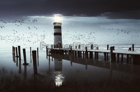 the, light, ii - 213135