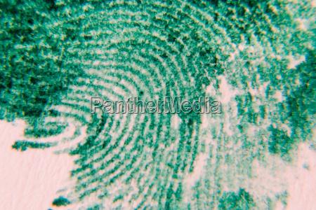 fingerprint - 218096