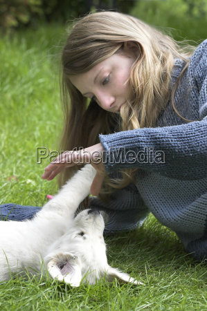 playing, with, puppies - 226933