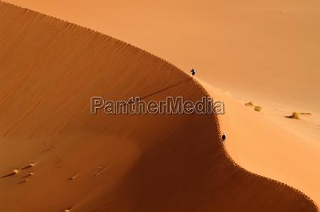 dune - 230501