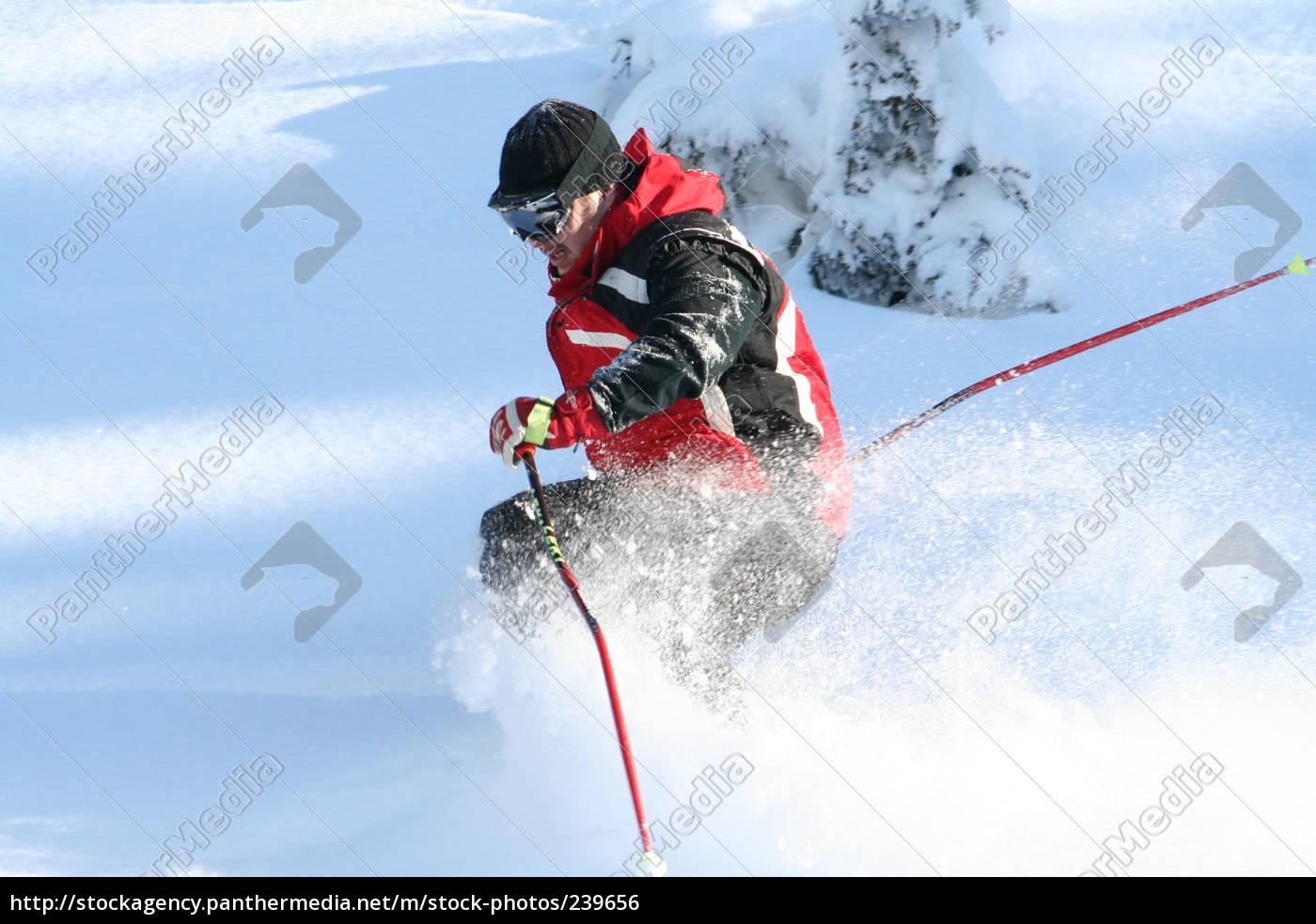skigott - 239656
