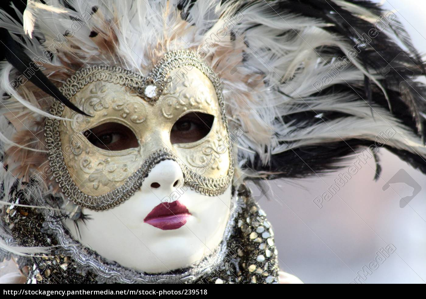 venice, carnival - 239518