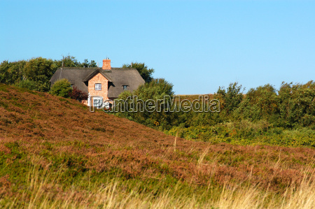 house in the heath