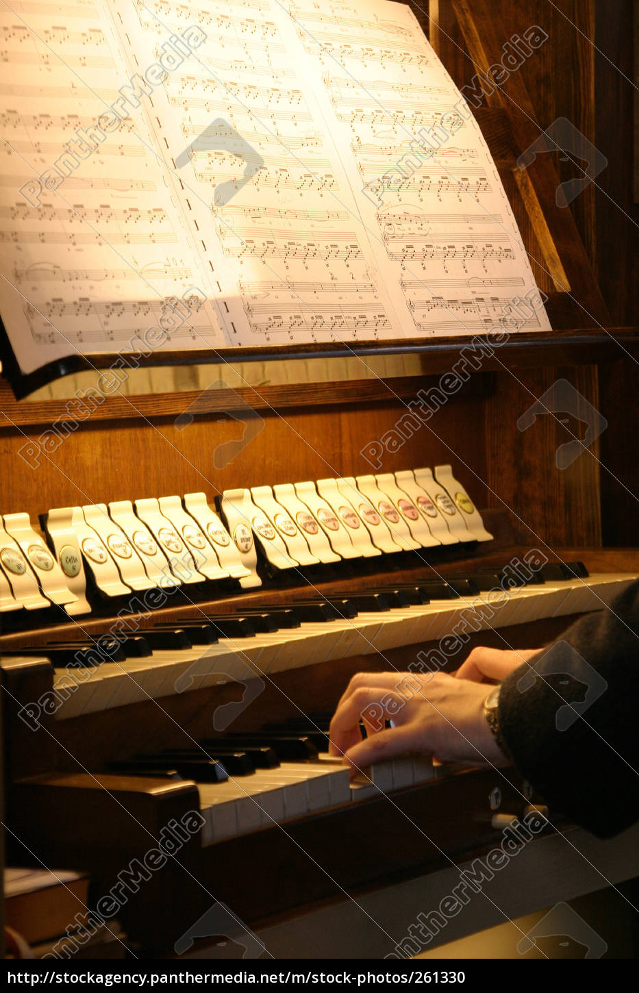 organ, player - 261330