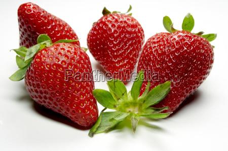 strawberry, -, 15 - 261798