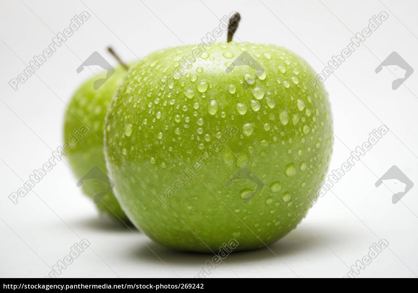 wet, green, apples, in, row - 269242