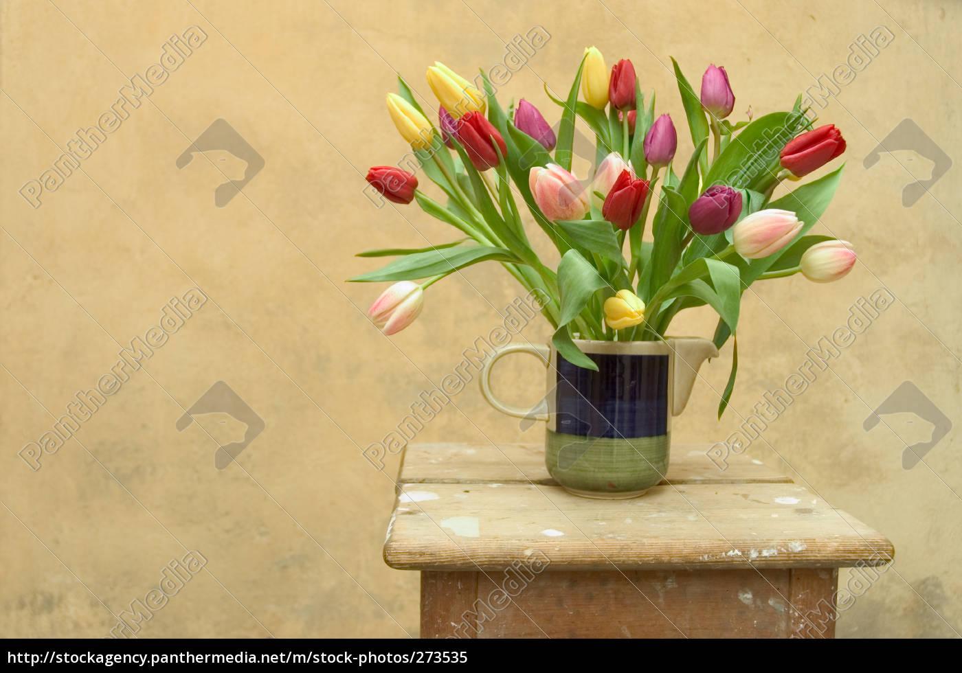 tulips - 273535