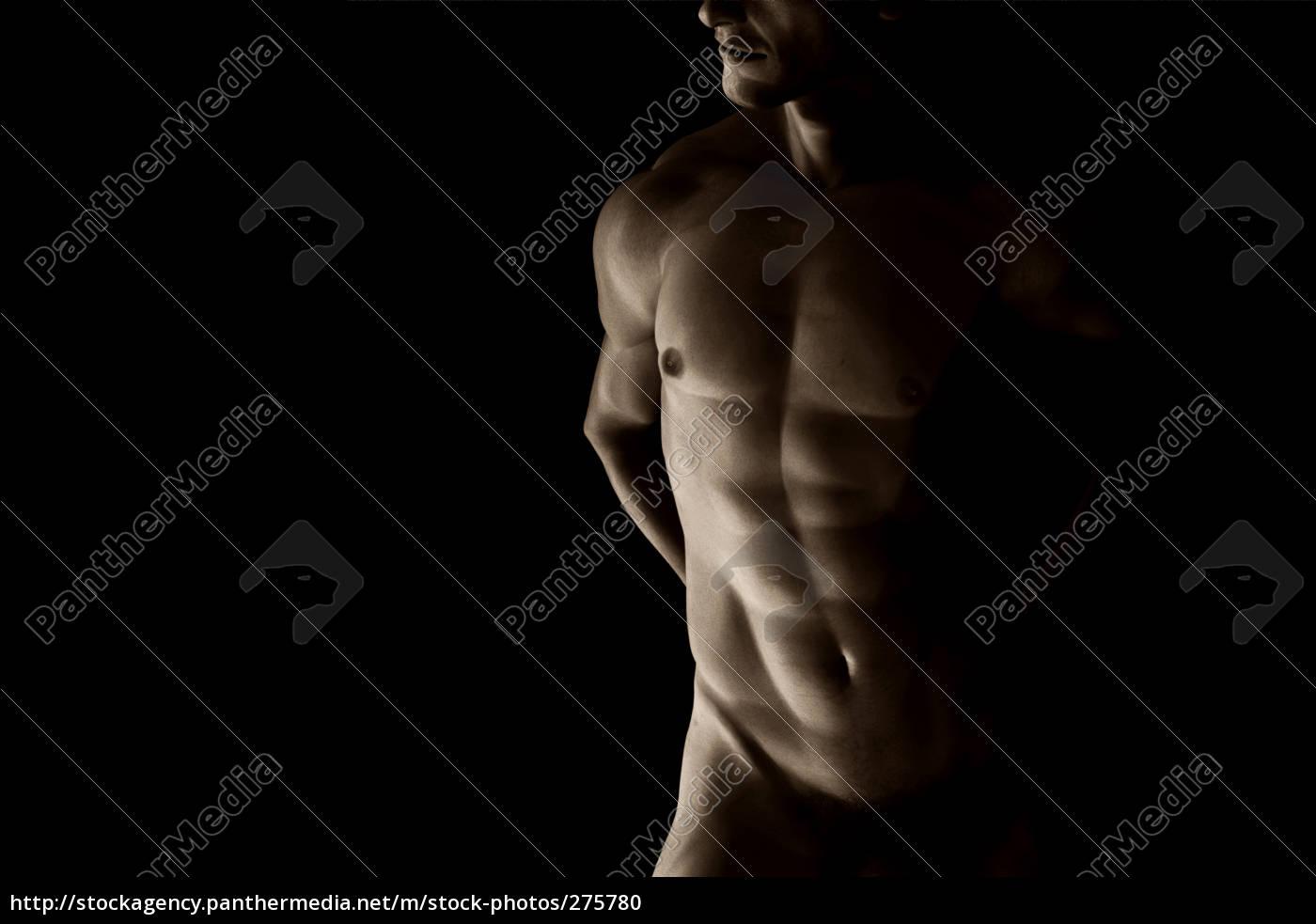 [-torso-] - 275780
