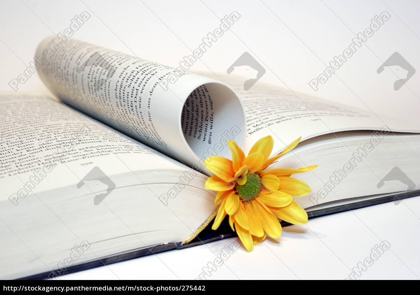 bookmark - 275442