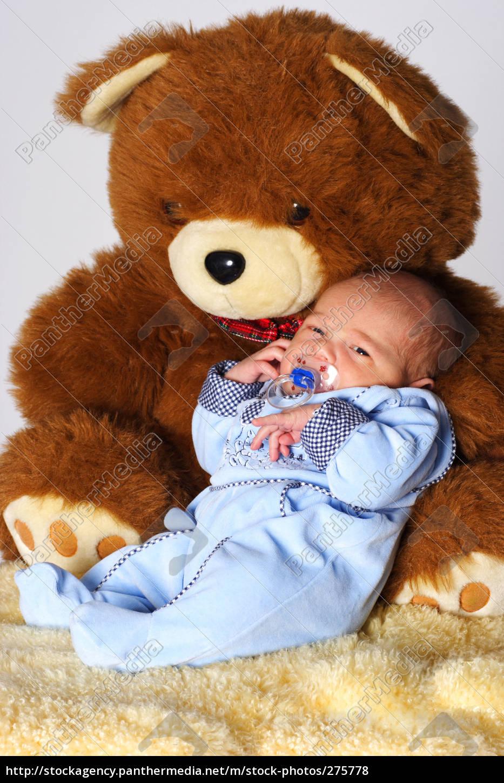 my, bear, and, i - 275778