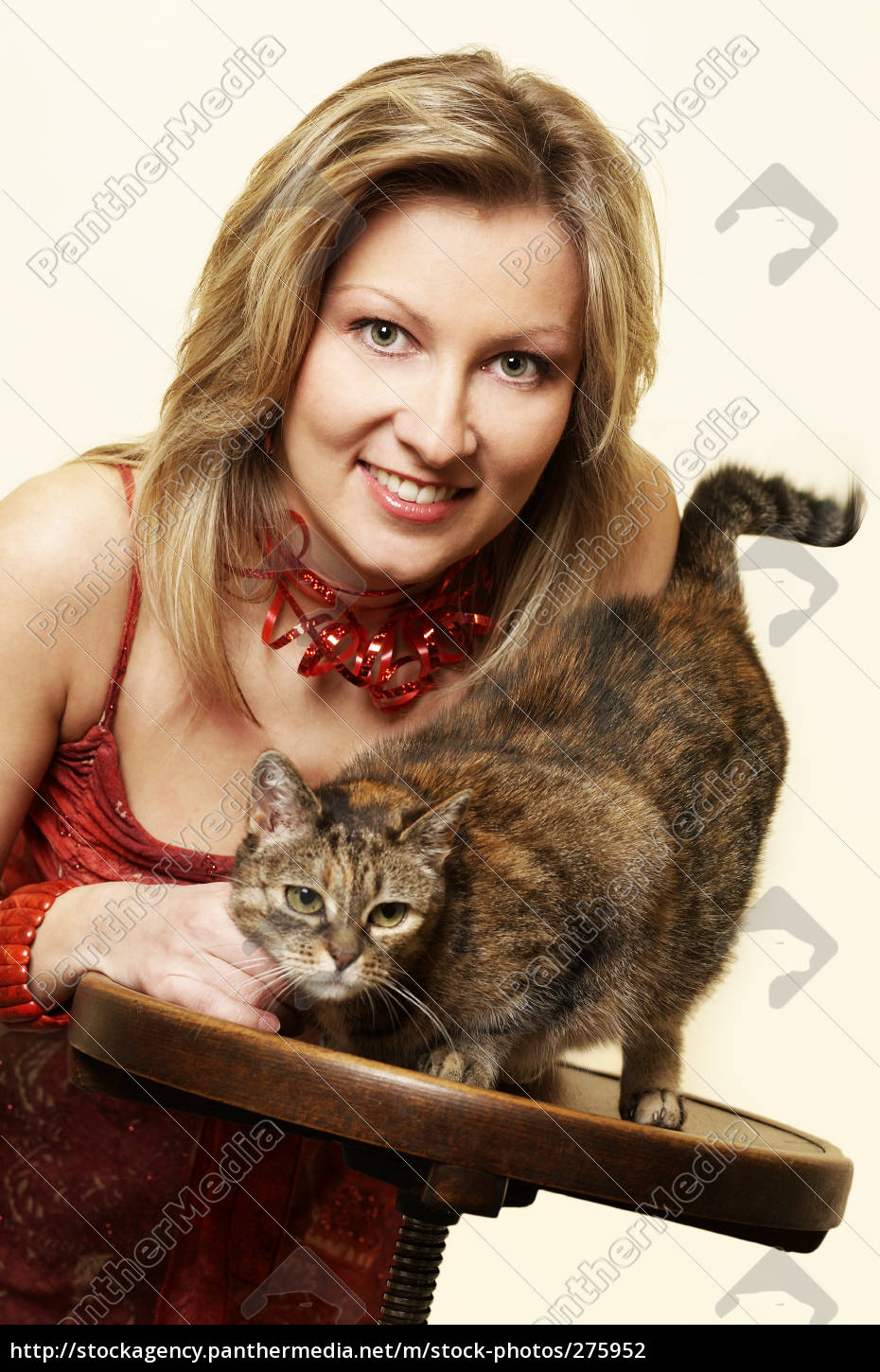 two, cats - 275952